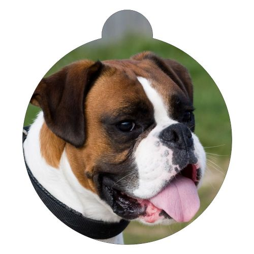 Boxer Picture ID tag (10)